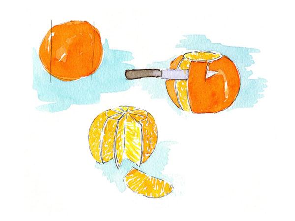Illustratie citrusvrucht schillen, uit 'Met lekkerbekkies aan tafel'